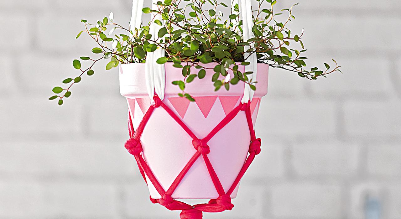 faire soi m me un jardin suspendu pour sortir du bouquet classique le comptoir de violette. Black Bedroom Furniture Sets. Home Design Ideas